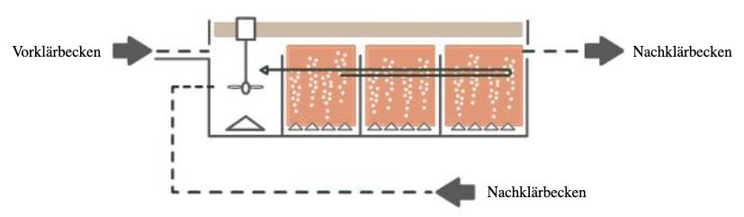 Belebungsbecken Grafik